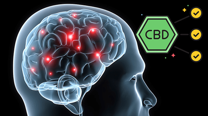 Taking CBD for Epilepsy