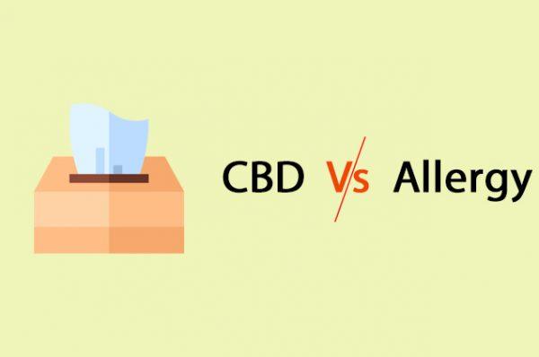 CBD vs Allergy