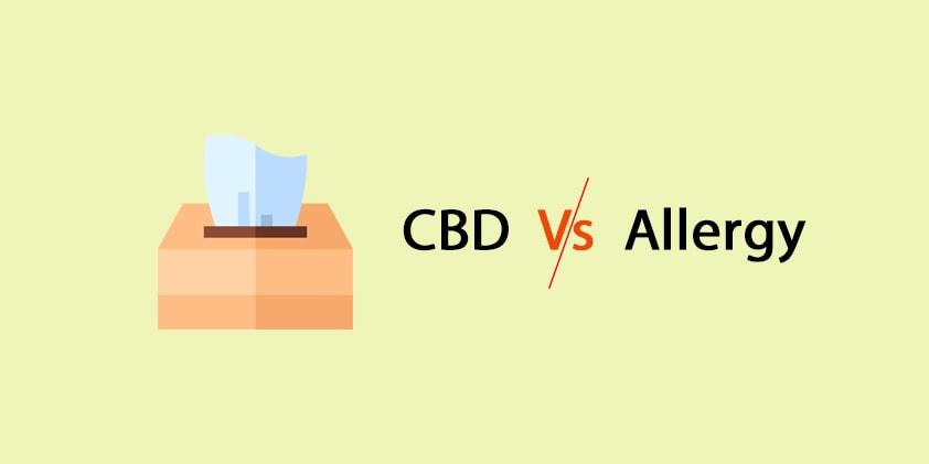 Can CBD Oil Stop Allergy?