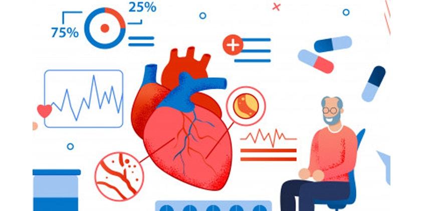 CBD Treatment for Heart Diseases