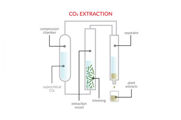 CO2 Extraction
