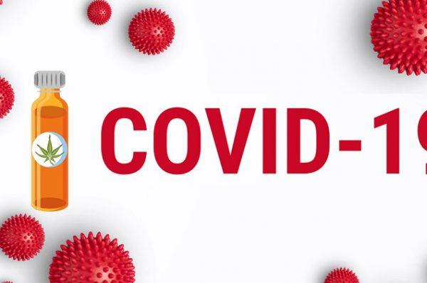 covid19 and cbd oil