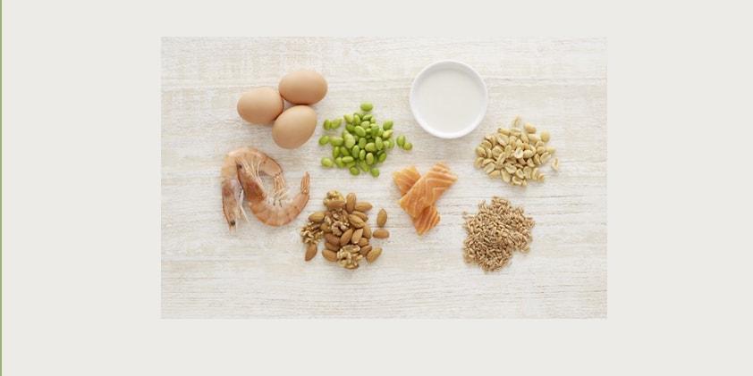 CBD for Food Allergy