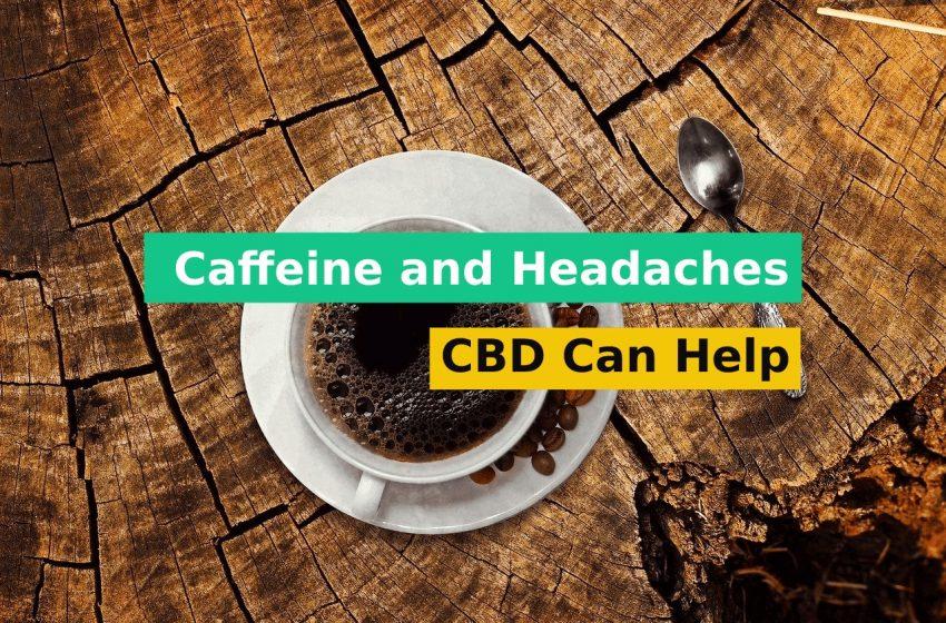 Caffeine and Headaches Can CBD Help