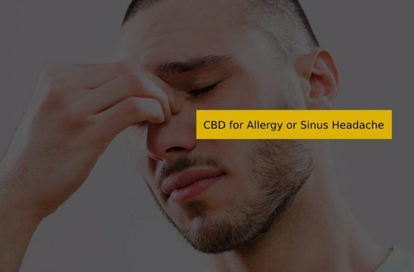 CBD for Allergy or Sinus Headache