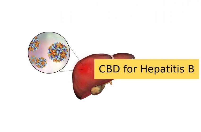 CBD for Hepatitis B