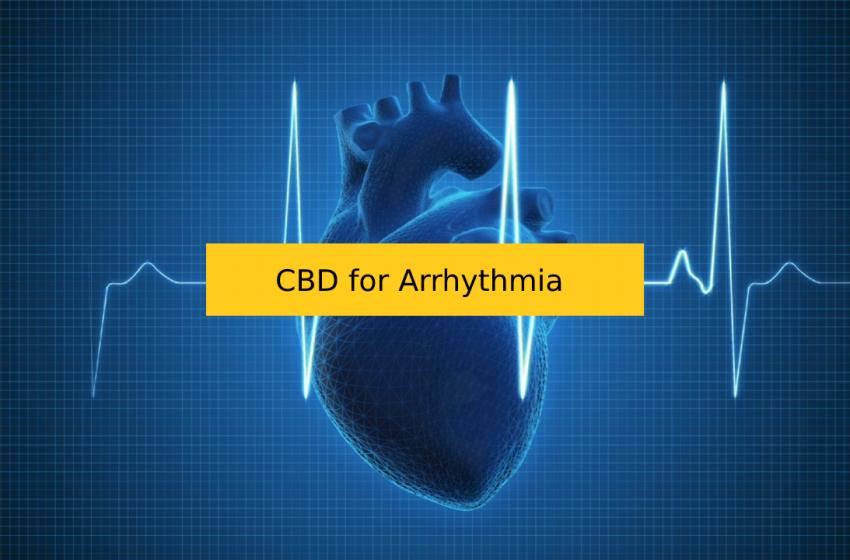 CBD for Irregular Heartbeat/Arrhythmia