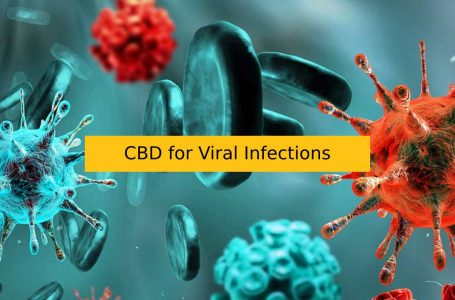 CBD for Viral Infections